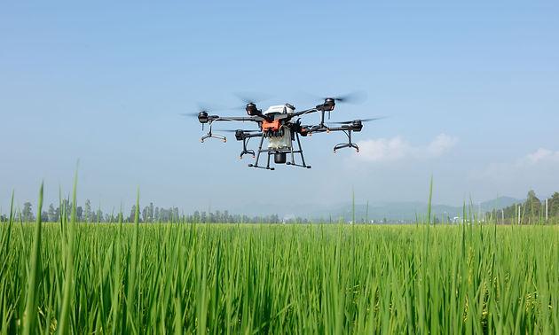 drones para fumigar mexico