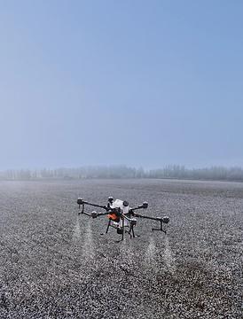 drones_agricolas_puebla.webp