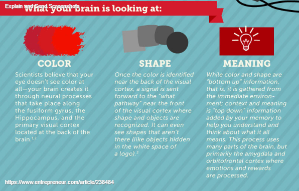 The Incredible Way Your Brain 'Sees' a Logo (Infographic) (3)