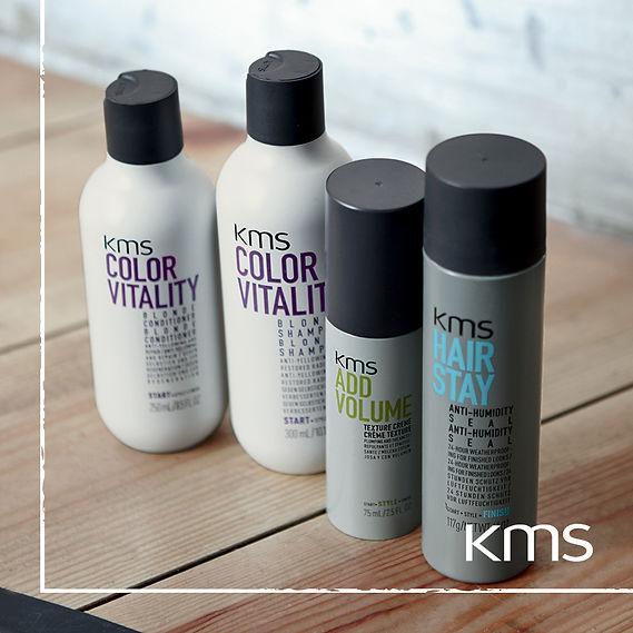 KMS17 Social Assets6 (1).jpg