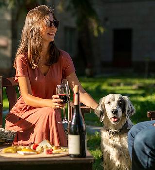 Şarap, Kadın, Köpek, Yemek