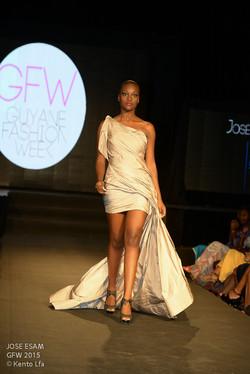JOSE ESAM GFW 2015-17