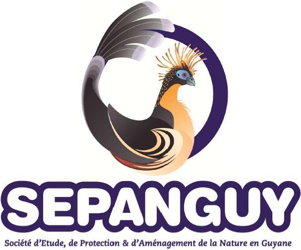 Logo_SEPANGUY