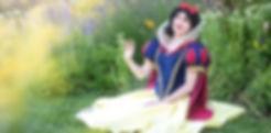 utah princess parties, princess parties utah, layton princess partis, davis county princess parties, weber county princess parties
