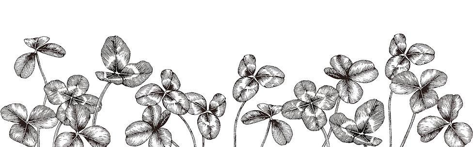 image-clover.jpg
