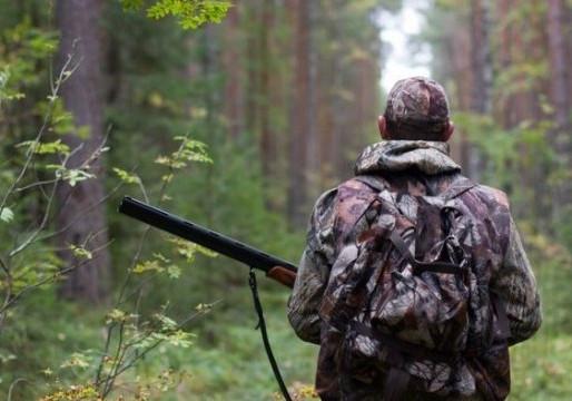 Попытки нардепов бороться за права животных выглядят как ограничение прав охотников