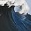 Thumbnail: the Tide