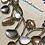 Thumbnail: Seashells on the beach