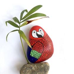 Parrot pebble
