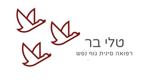 לוגו לרוחב.jpg