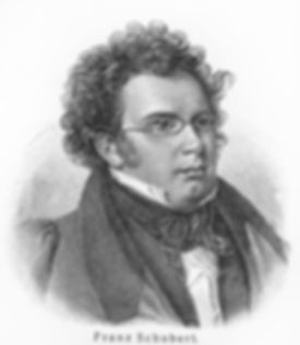 Franz Schubert - Picture from Meyers Lex