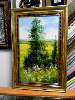 Картина в раме, БАГЕТ-ФОТО-ДИЗАЙН