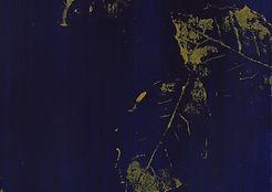 Fallen Oak - cropped.jpg