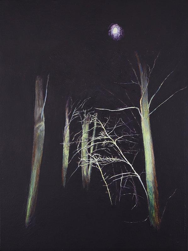 Nightwoods 2.jpg