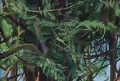 Wilmington Yew III - cropped 1.jpg