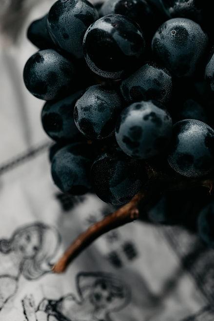 Comment déguster un vin par Sébastien Laffitte, sommelier-vigneron.