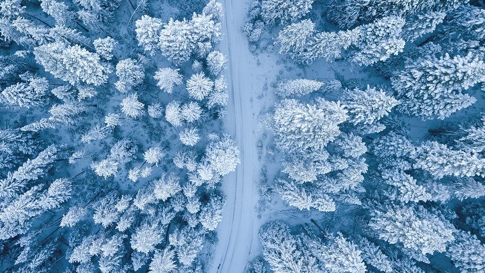 pexels-ruvim-miksanskiy-1438761.jpg