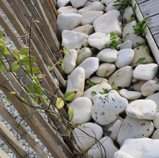 Décoration de jardin Île de Ré