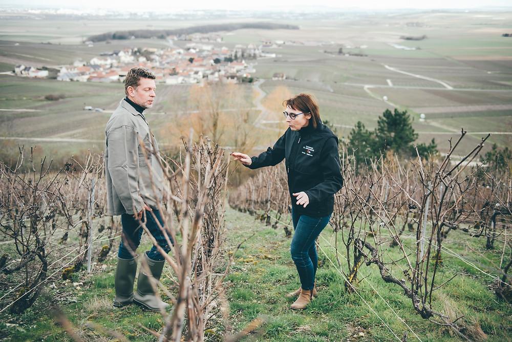 Sébastien Laffitte et Sophier Deguerne pendant le taille des vignes de Champagne.