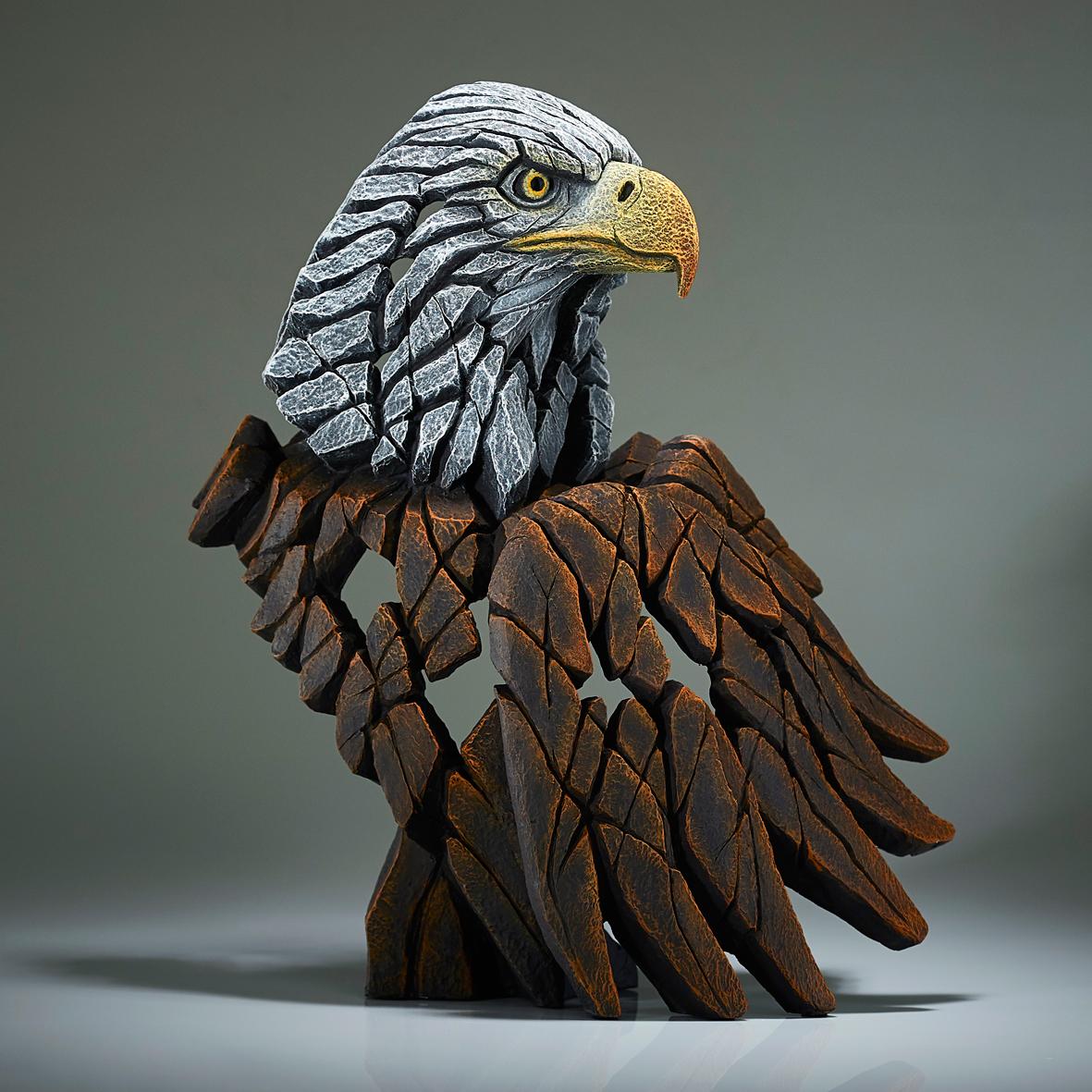 Weißkopfseeadler Büste