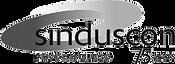 logo_SINDUCSCON_75-anos.png