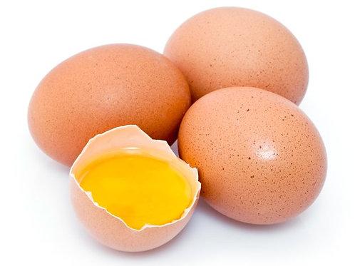 uova fresche bio galline allevate in libertà
