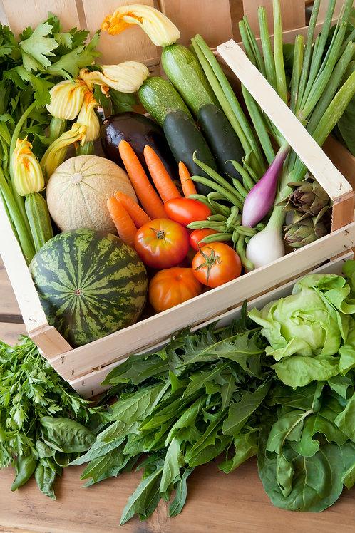 cassetta frutta e verdura bio biologica KM0 consegna a domicilio Milano