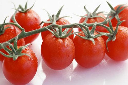 Pomodoro ciliegino cherry bio