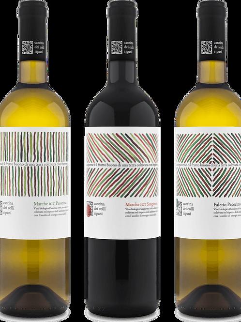 CANTINA DEI COLLI RIPANI Marche - vini bianchi