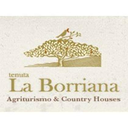 Olio EVO Toscana - Tenuta La Borriana - 50cl