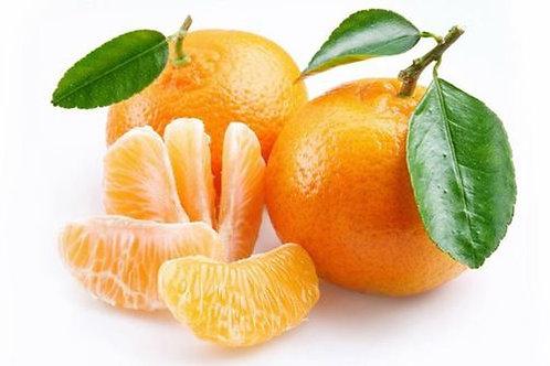 Mandarino tardivo di Ciaculli Palermo Presidio Slow Food