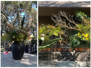 Ikebana at Descanso Gardens