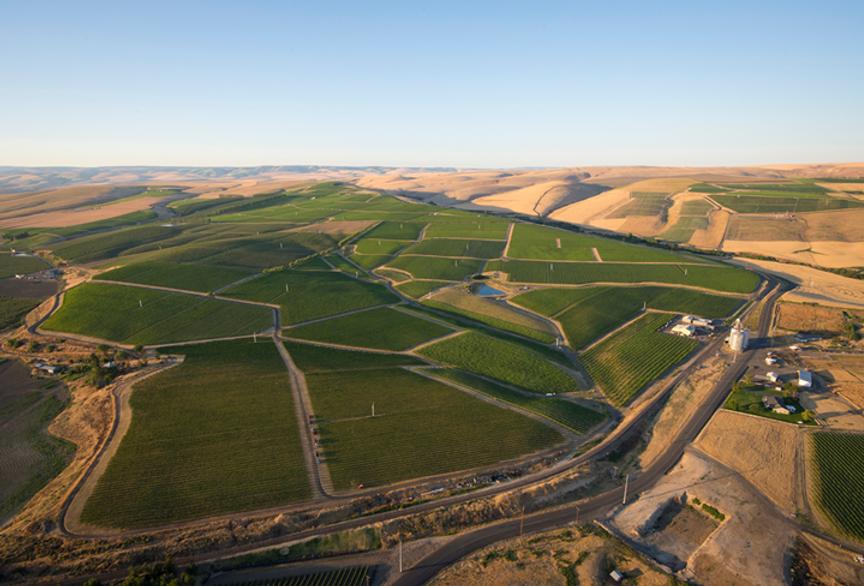 Seven Hills Vineyard aerial view.png