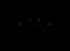 US Logo (black & white)-01-01.png