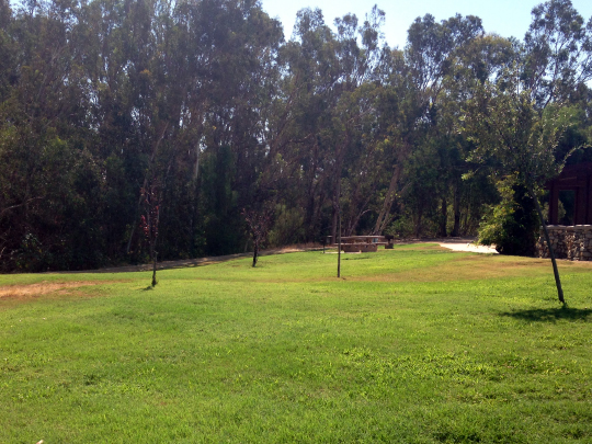 Citrus Park Group Picnic Area
