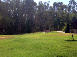 Citrus Park Group Picnic Area