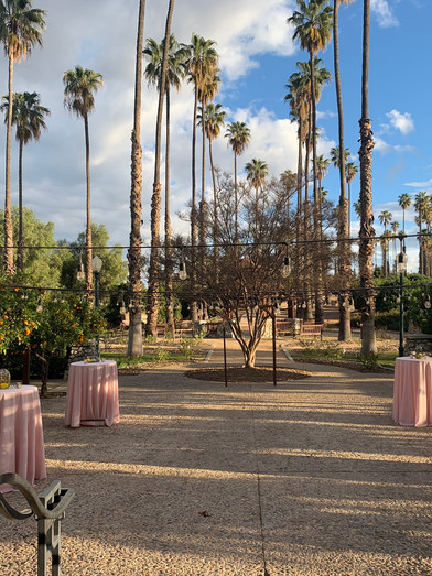 Citrus Park Wedding Venue Riverside