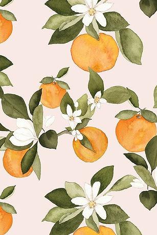 Vintage Oranges.jpg