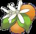 Citrus Park Logo.png