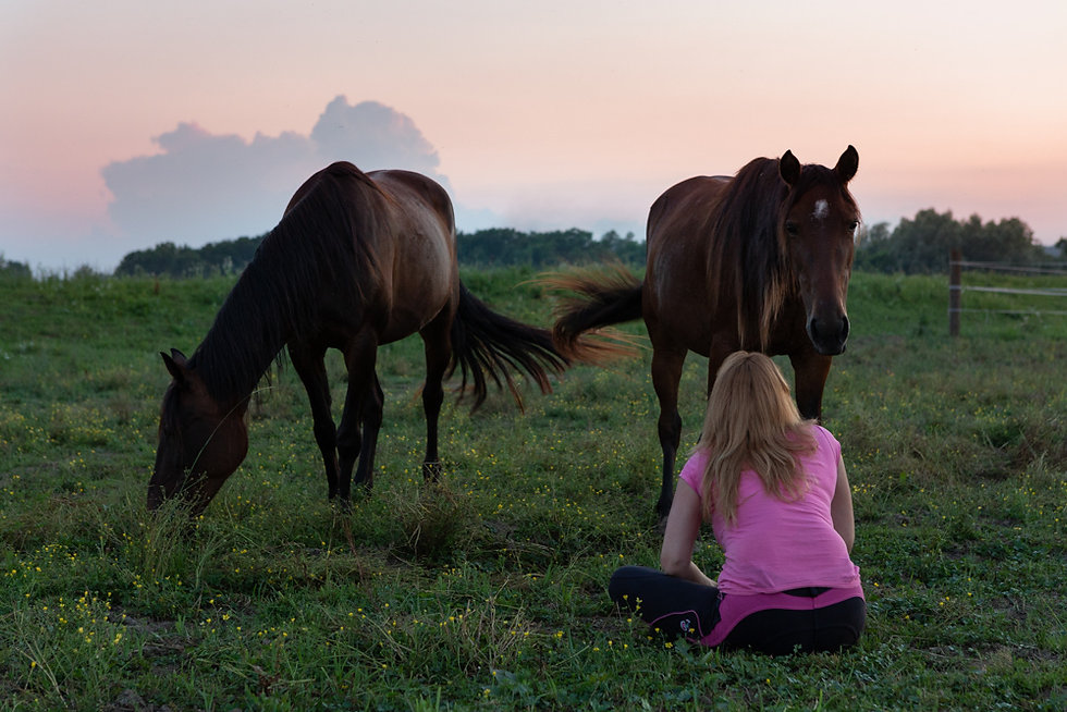 samorazvoj uz konje.jpg