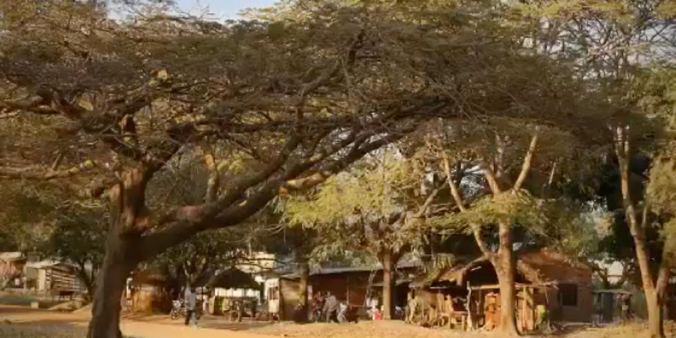 Izložba fotografija prof. Anite Poljak: Pogled s krova Afrike
