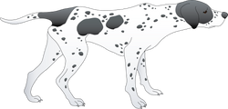 3d dog character model design