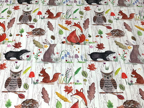 Whimsical woodland preorder