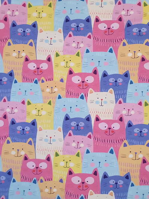 Colourful cats in row