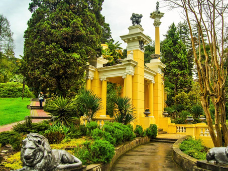 Дендрарий парк в Сочи
