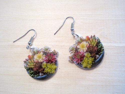 cute graphic photo print basket o' succulent earrings