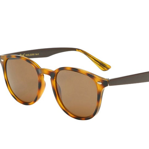 courtney tortoise brown sunglasses