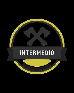 Corso Intermedio_Tavola disegno 1.png
