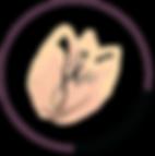 JBC Logo.png