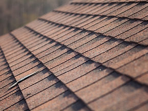 Roof Washing Kalamazoo, Michigan